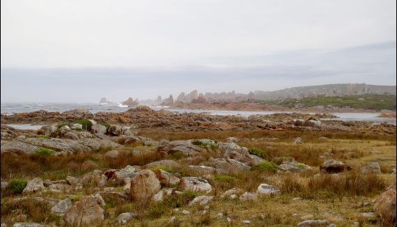 Tasmania adventure west coast