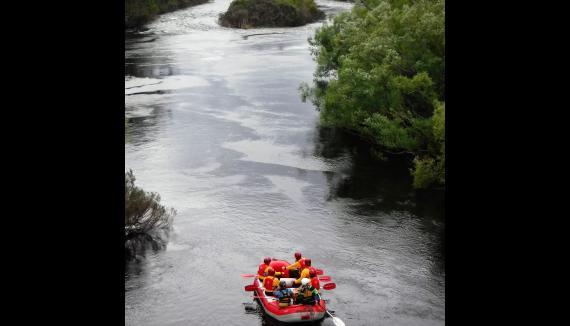 hobart rafting derwent tasmania