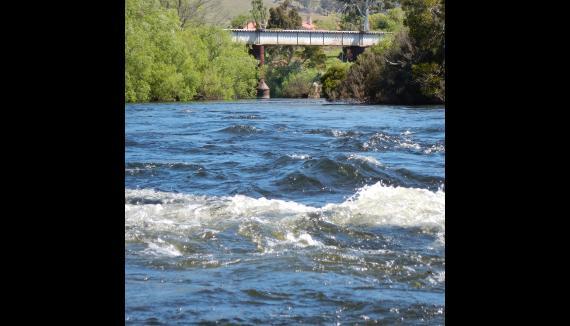 Rafting Derwent River Hobart Tasmania New Norfolk