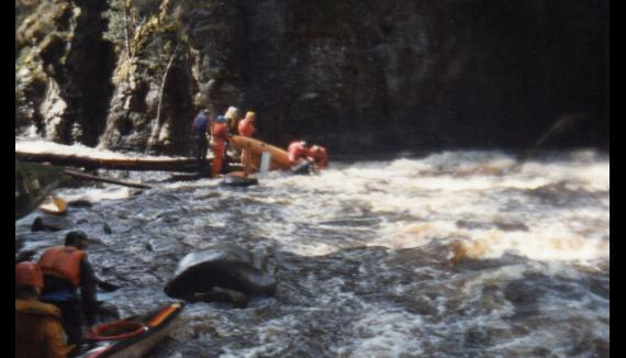 Wilderness white water rafting