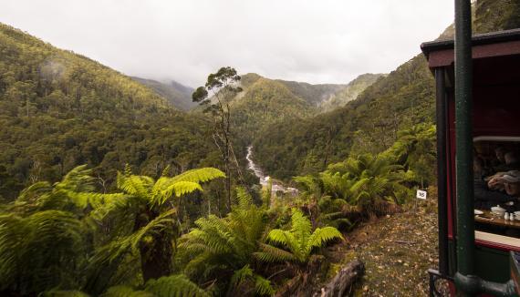 Tasmania wilderness rafting